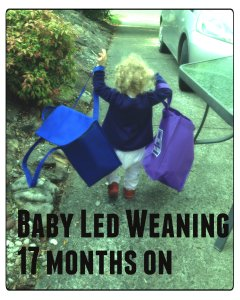 Baby Led Weaning - 17 months on