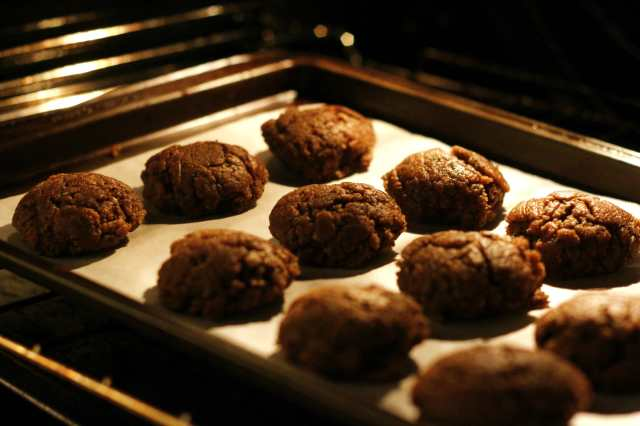 carob biscuit 3