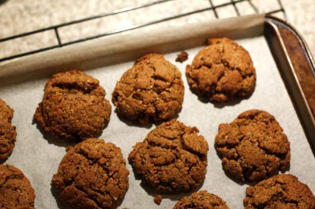carob biscuit 5